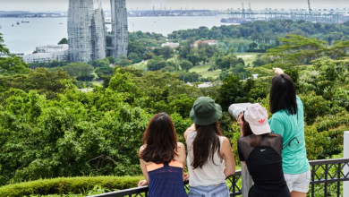 Mount Faber Peak: Cover Image